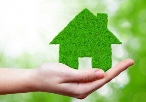 Landlords Looking To Go Green?